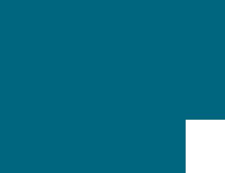 desarollo web
